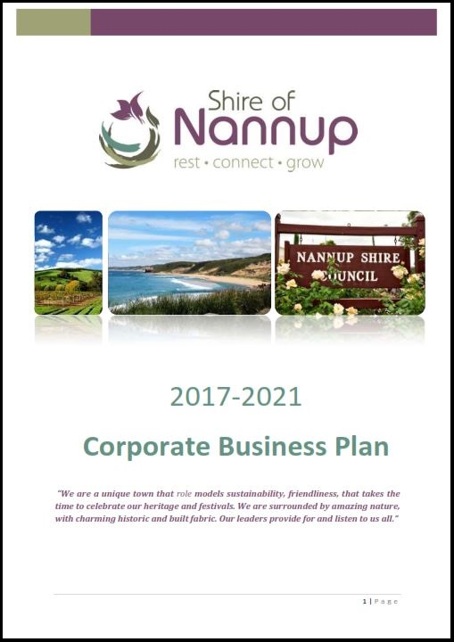 Corporate Business Plan 2017-2021